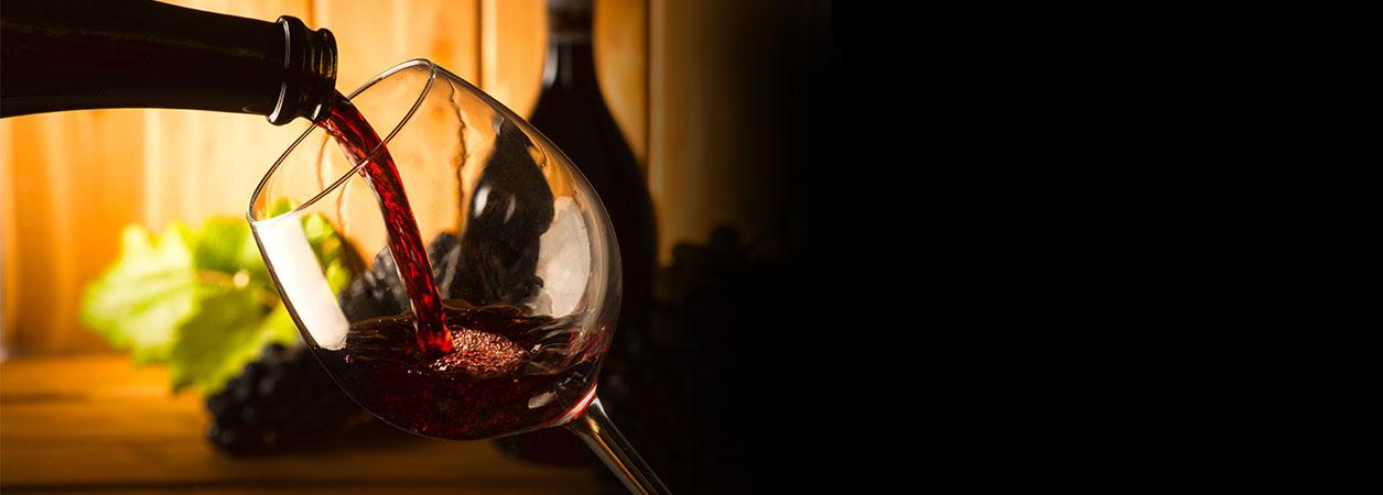 Dégustation spéciale Vins découverte